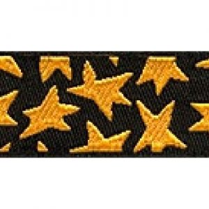 Buckle Gold Stars