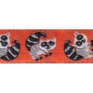 Buckle Raccoons