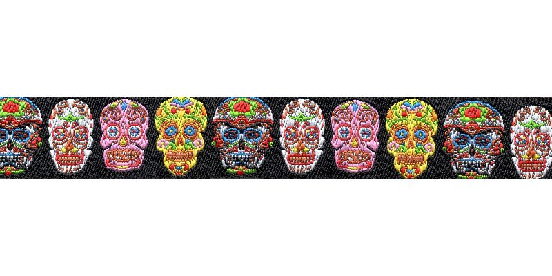 Buckle Painted Skull